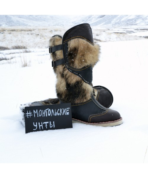 4e2001ee0 О монгольских унтах